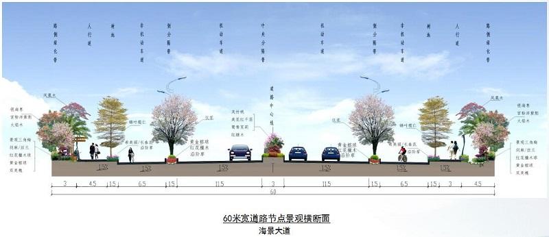 贺州站规划_中信国安北海第一城市政道路工程景观规划设计--设计成果展示
